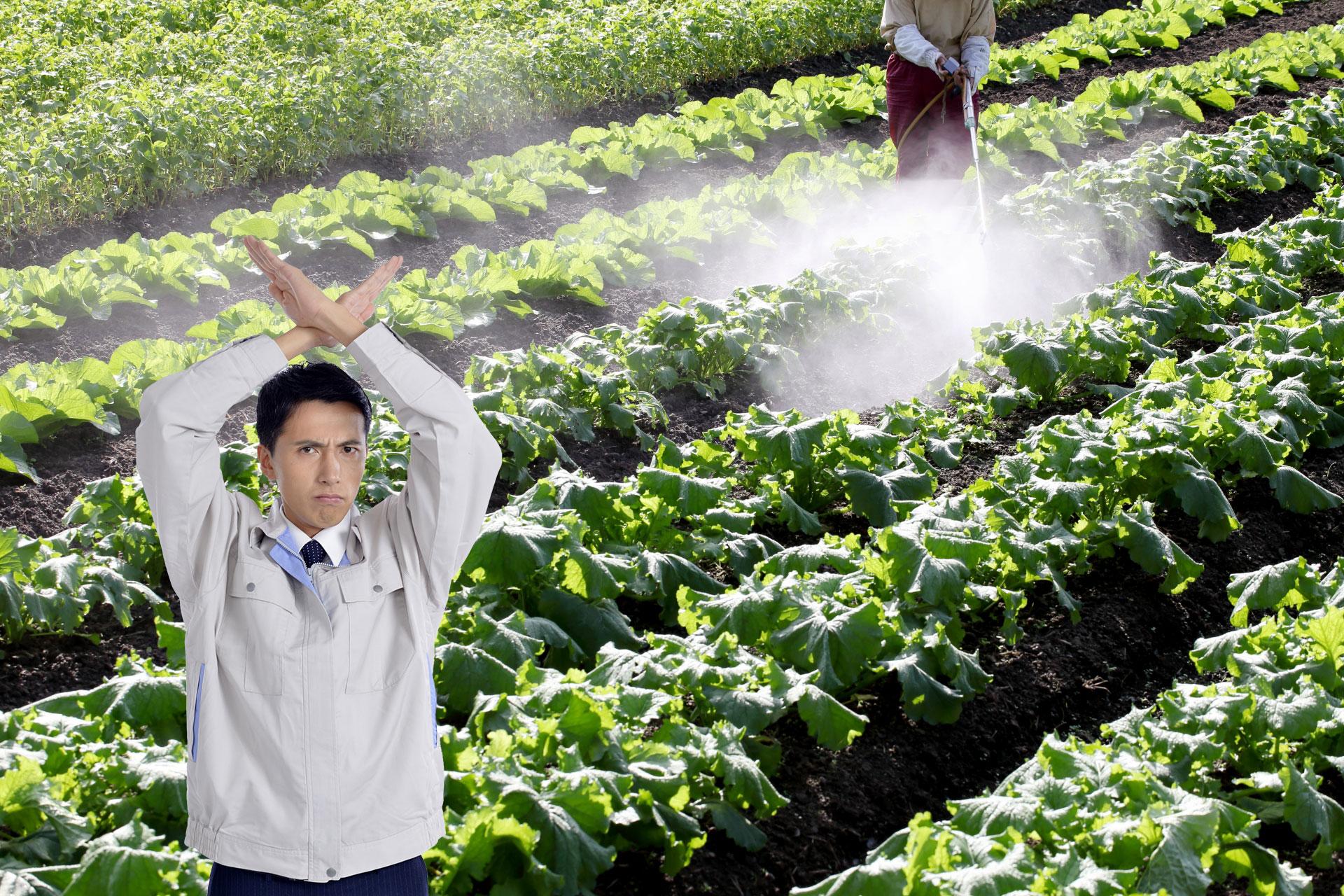 有害な農薬を最大限削減